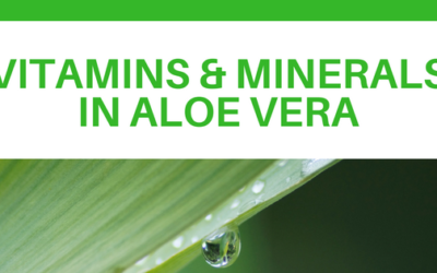 Vitamins and Minerals in Aloe Vera