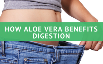 How Aloe Vera Benefits Digestion